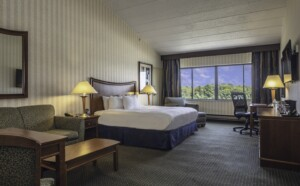 Double Tree Guest Room